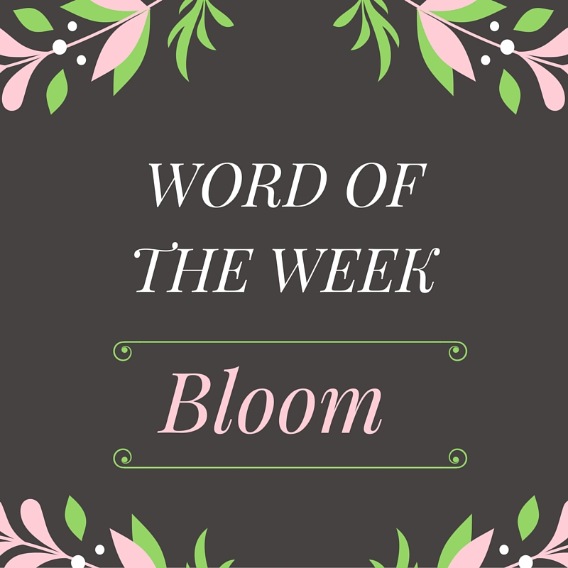 word of the week (1)
