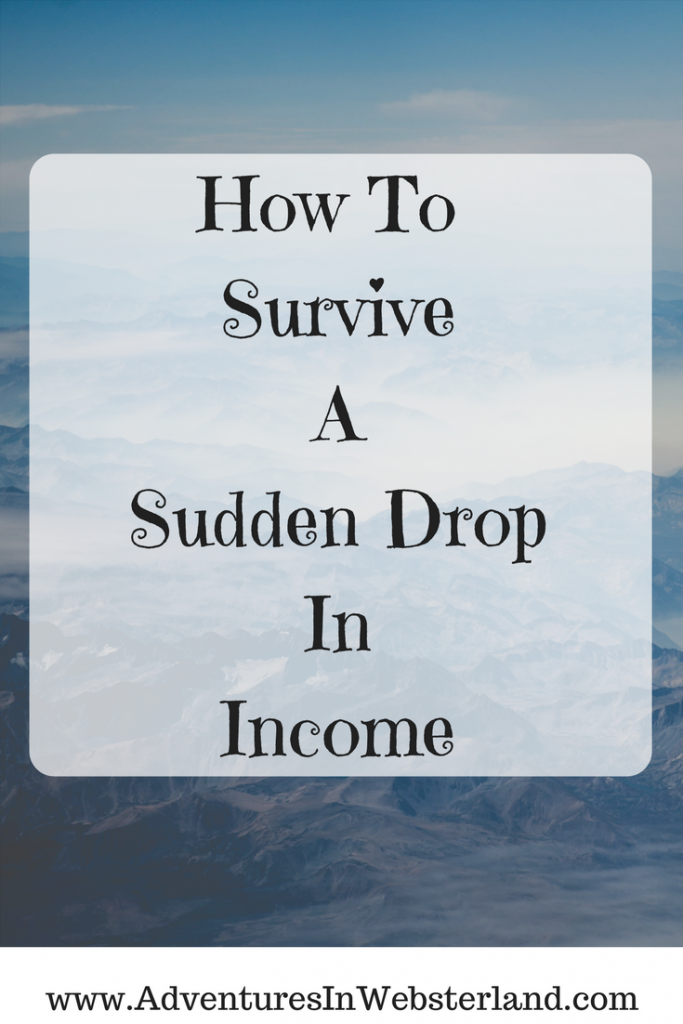 How To Survive A Sudden Drop In Income