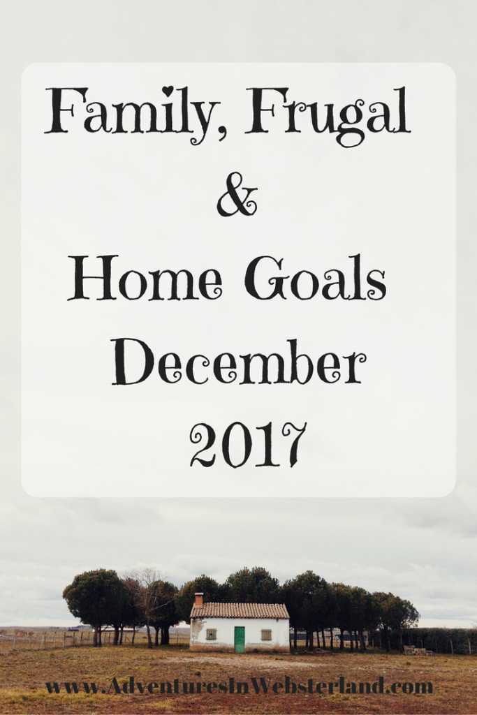 Family frugal home goals for december 2017 adventures - Family days enero 2017 ...