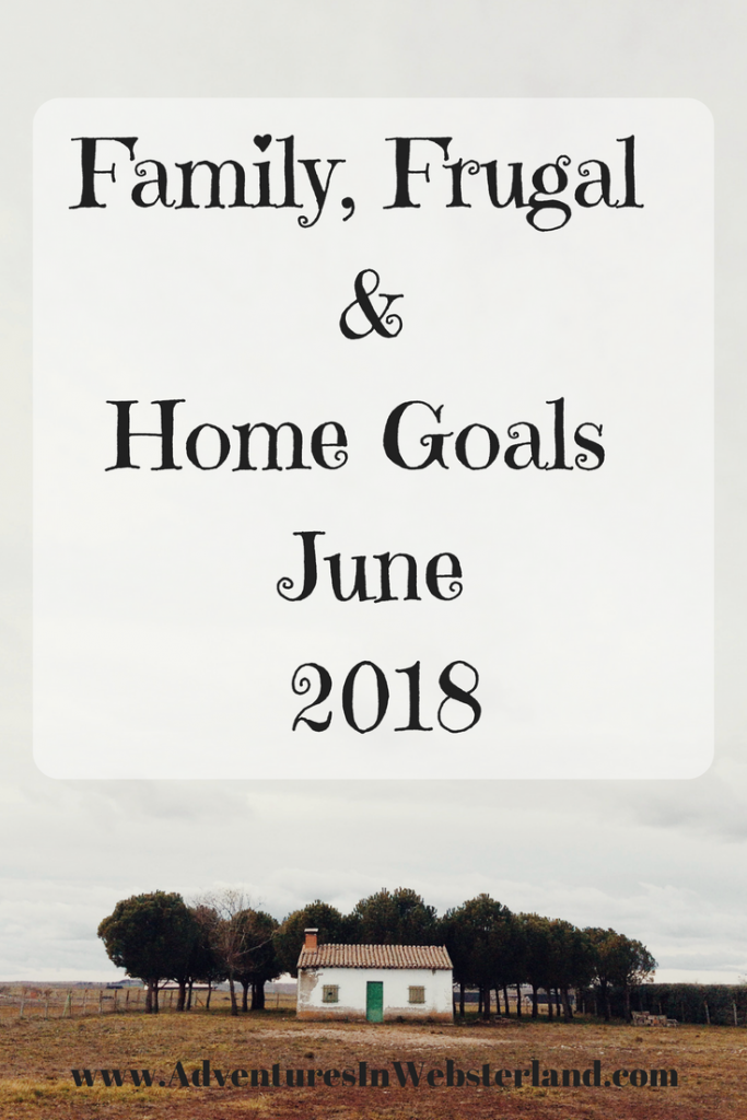 Family, Frugal & Home Goals For June {2018}