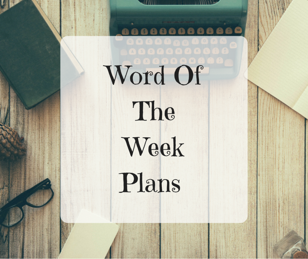 Word Of The Week – Plans
