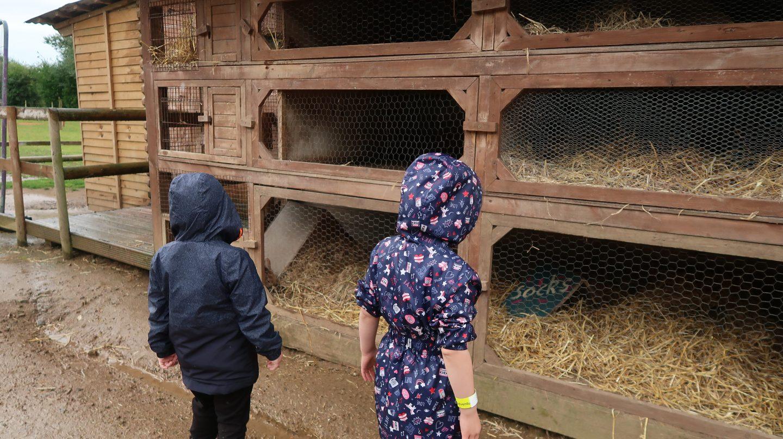 children in raincoats looking for rabbits aMaizin! adventure park jersey