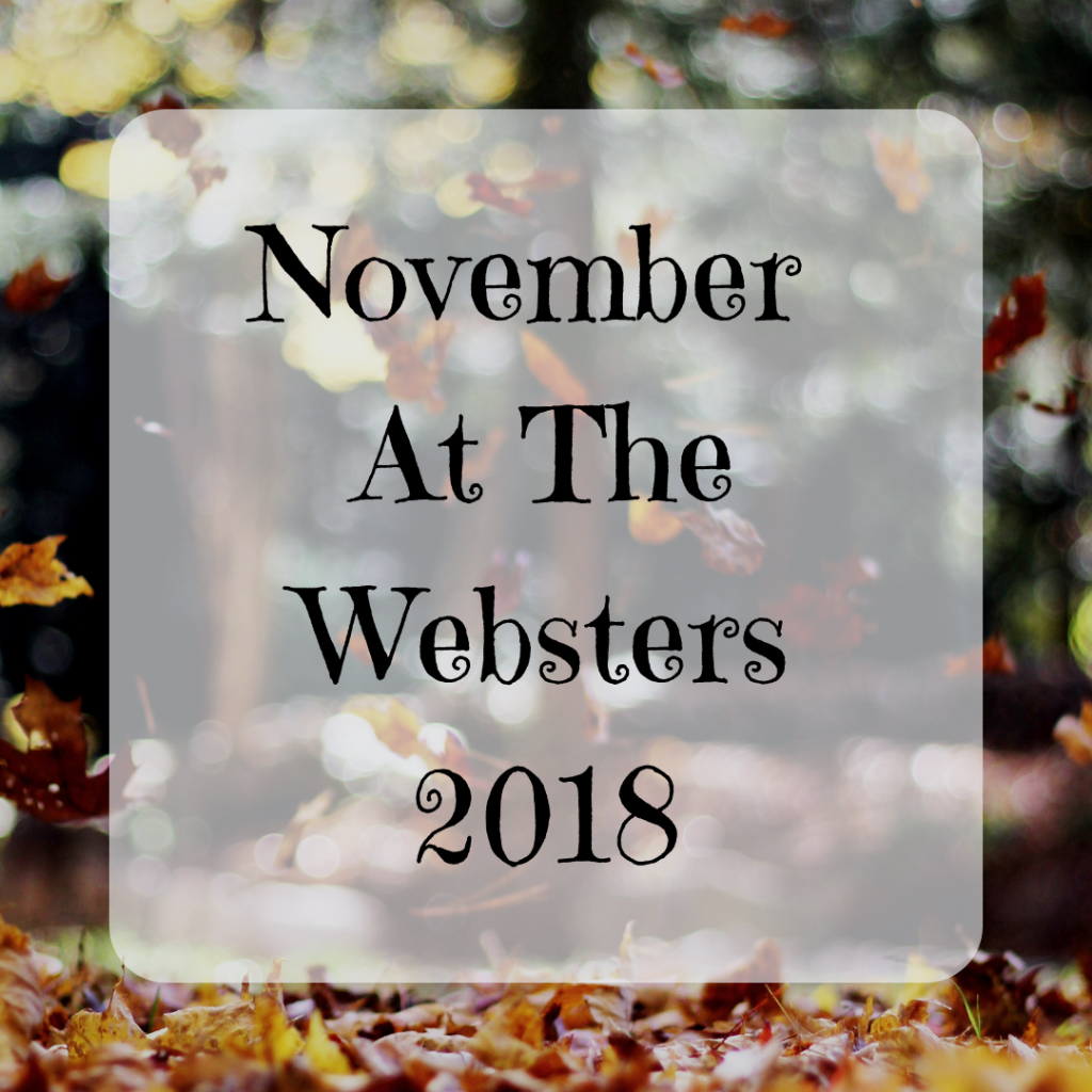 November At The Websters Monthly Round Up {2018}