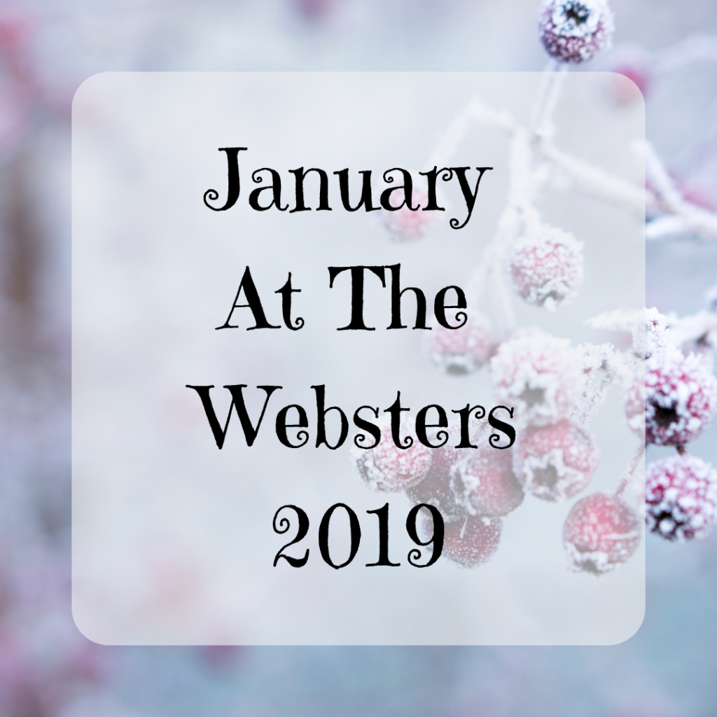 January At The Websters Monthly Round Up {2019}