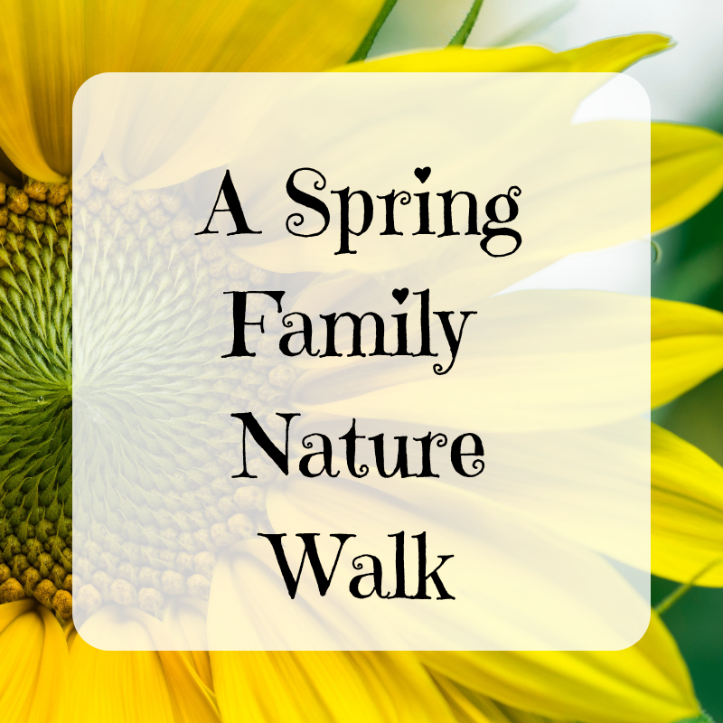 A Spring Family Nature Walk